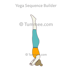 tripod headstand prep knees on elbow yoga catur svanasana