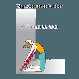 camel pose variation hands on floor ustrasana variation