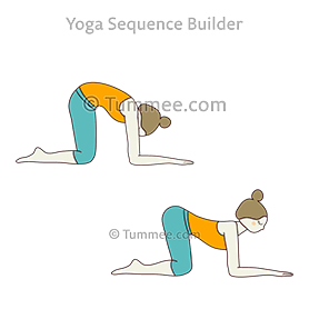 cat cow pose forearms yoga bitilasana marjaryasana