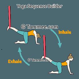 cat cow pose yoga bitilasana marjaryasana  yoga