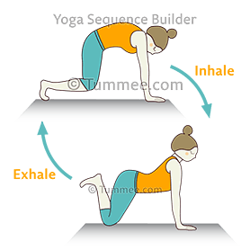 how to do marjaryasana hovering bitilasana pada uttana