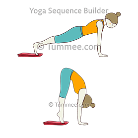 plank pose phalakasana variations  60 variations of