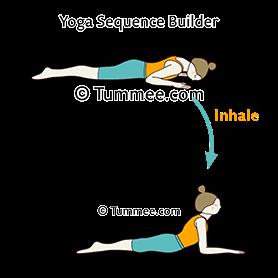 sphinx pose salamba bhujangasana niravalasana