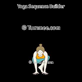 side crow pose yoga parsva bakasana  yoga sequences